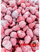 Framboesa 95/5 Whole - IQF Fruta congelada - FRUIT B2B