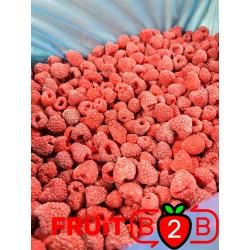 Малина 95/5 Whole - IQF Замороженные фрукты - FRUIT B2B