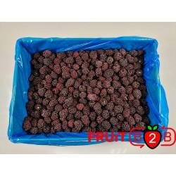Amora class 1 - IQF Fruta congelada - FRUIT B2B