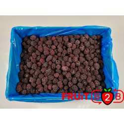 Blackberry class 1- IQF Frozen Fruit - FRUIT B2B