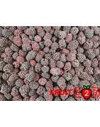 ブラックベリー class 1 - IQF 冷凍フルーツ - FRUIT B2B