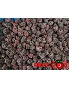 Brombeere class 1- IQF Gefrorene Früchte - FRUIT B2B