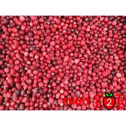 クランベリー - IQF 冷凍フルーツ - FRUIT B2B