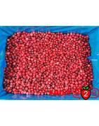 Kranichbeere - IQF Gefrorene Früchte - FRUIT B2B