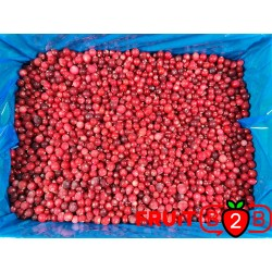 Żurawina - IQF Mrożone owoce|Mrożonki - FRUIT B2B