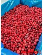 Клюква - IQF Замороженные фрукты - FRUIT B2B