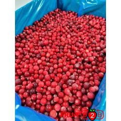 Cranberry - IQF Frozen Fruit - FRUIT B2B