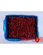 Malina Whole - Glen - IQF Mrożone owoce|Mrożonki - FRUIT B2B