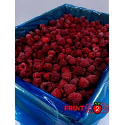 Frambuesa Whole - Glen - IQF Fruta congelada - FRUIT B2B