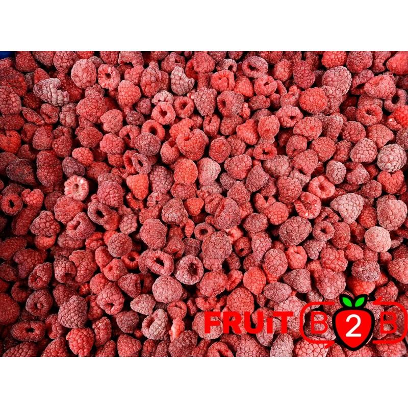 覆盆子 85 15 Whole - IQF 冷凍水果 - FRUIT B2B