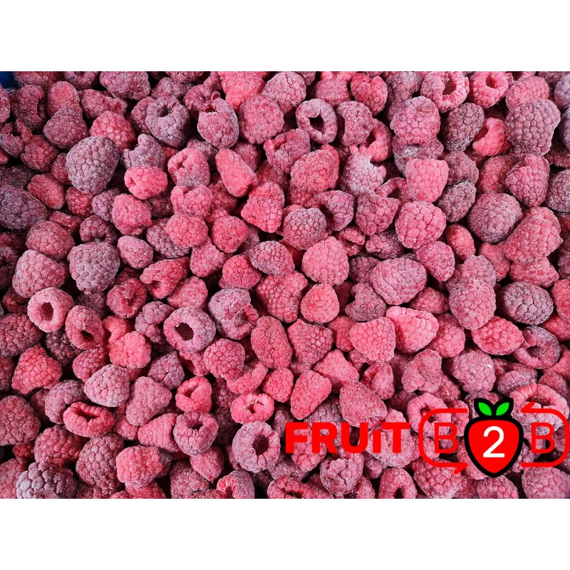 Himbeere 80/20 Whole - IQF Gefrorene Früchte - FRUIT B2B