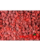Raspberry 70/30 Whole - IQF Frozen Fruit - FRUIT B2B