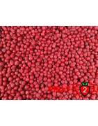Grosella class 1 - IQF Fruta congelada - FRUIT B2B