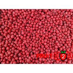 Groselha class 1 - IQF Fruta congelada - FRUIT B2B