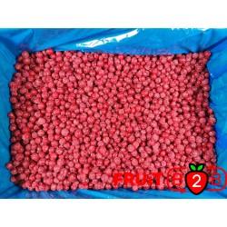 Czerwona Porzeczka class 2 - IQF Mrożone owoce Mrożonki - FRUIT B2B