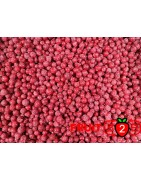 Красная смородина class 2 - IQF Замороженные фрукты - FRUIT B2B