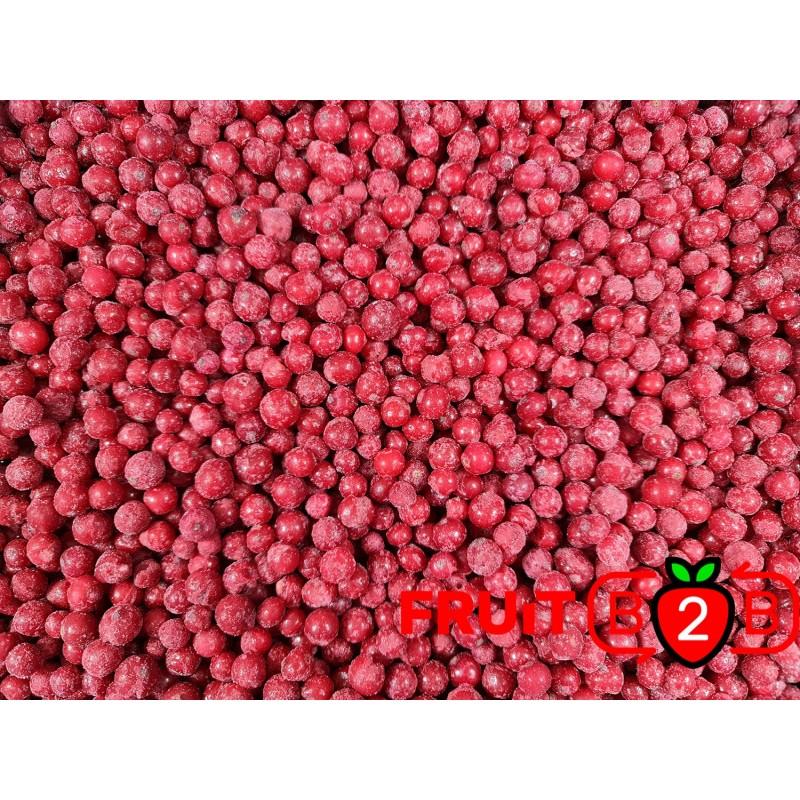 紅醋栗  class 2 - IQF 冷凍水果 - FRUIT B2B