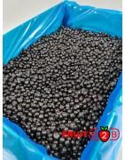 Arándano Salvaje clase 1 - IQF Fruta congelada - FRUIT B2B