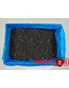 ワイルドブルーベリー クラス1 - IQF 冷凍フルーツ - FRUIT B2B