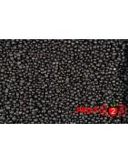 Myrtille sauvage classe 1 - IQF Fruits surgelés - FRUIT B2B
