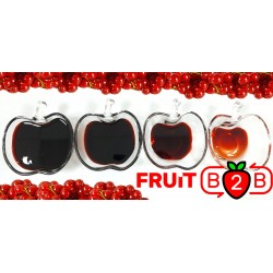 Red Currant Juice Concentrate 65º Brix - Supplier - Fruit B2B