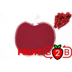 Purée de Groseille - Purée Aseptique Fruits & Purées de fruits et de légumes pour l'industrie agro-alimentaire - Fruit B2B